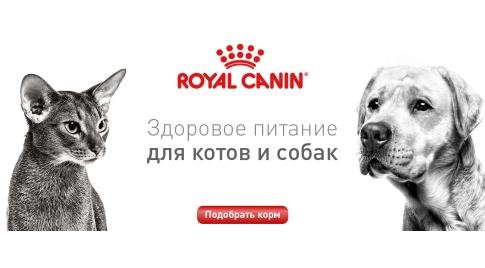 Скидки на Royal Canin до 10%