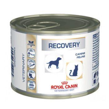 Лечебный влажный корм для собак Royal Canin Recovery 195 г
