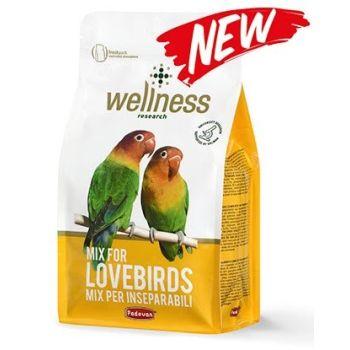 Корм для неразлучников Padovan Wellness Parrocchetti Lovebirds 850 г
