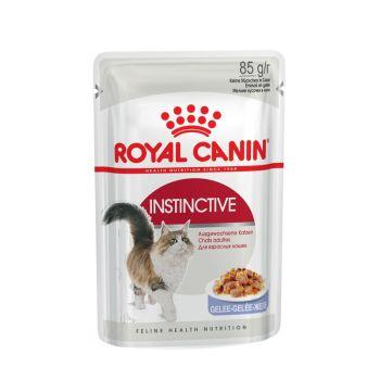 Акция 8+4! Влажный корм для кошек Royal Canin Instinctive Jelly 85 г х 12 шт
