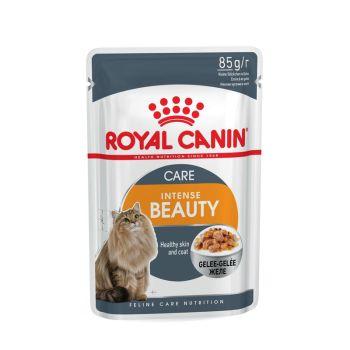 Акция 8+4! Влажный корм для кошек Royal Canin Intense Beauty Care Jelly 85 г х 12 шт