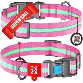 Ошейник для собак нейлоновый WauDog Nylon, светонакопительный, розовый, обхват шеи - 31-49 см, ширина - 25 мм
