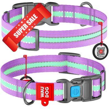 Ошейник для собак нейлоновый WauDog Nylon, светонакопительный, фиолетовый, обхват шеи - 35-58 см, ширина - 25 мм